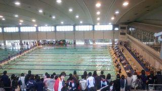 hswimming-2012-02-18T21-36-37-3.jpg