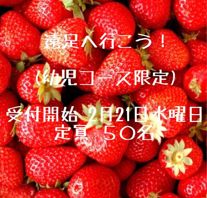 3462EE23-D620-4329-903D-8C4D37FF0F70.jpeg