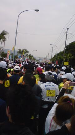 20100110084239.jpg