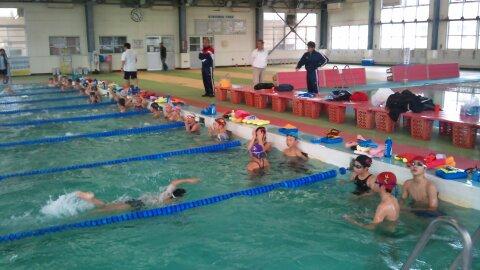 hswimming-2010-12-25T10_56_53-4.jpg