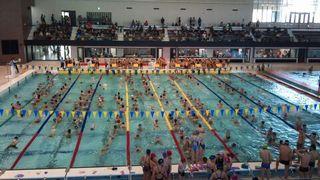 hswimming-2011-04-10T08_15_13-2.jpg