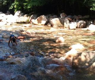 hswimming-2011-08-09T15_08_51-2.jpg