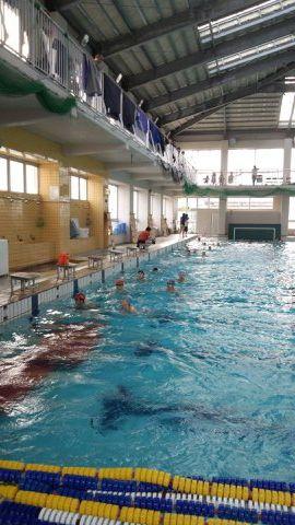 hswimming-2012-06-11T16-48-37-5.jpg